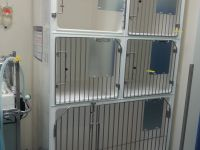 Pet cage, Zoo cage, Animal cage, Vet cage, Fibreglass Cage, Cat cage, Dog Cage, SPCA cage
